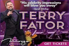 Terry Fator Show Promotion