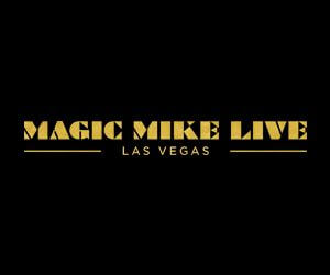 Magic Mike Live Show Promotion